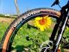 ruote-carbonio-adesivi-colorati-full-color-cerchi-Bike-Direction